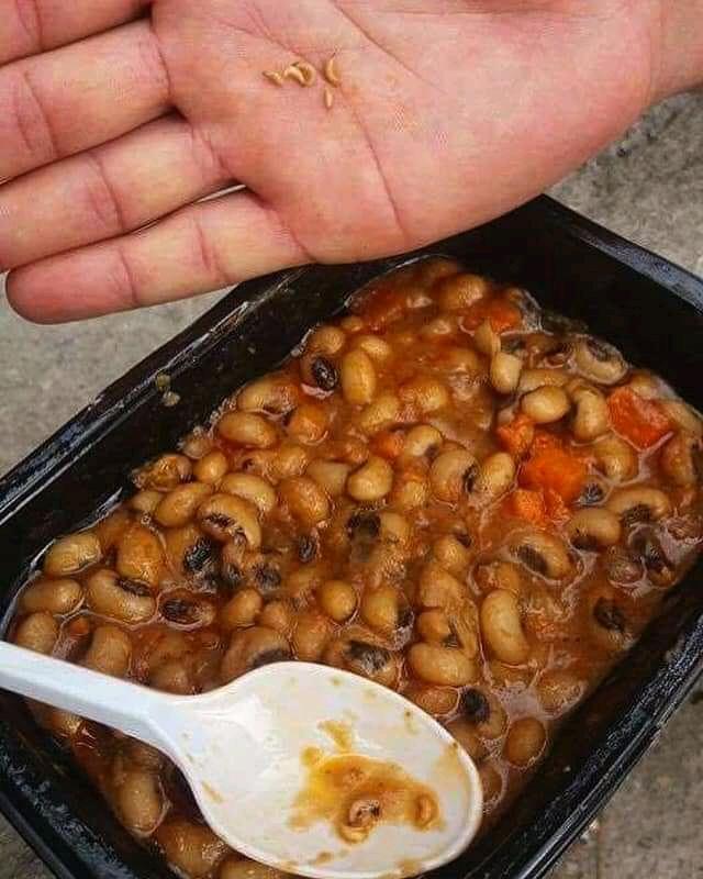 Die Mahlzeiten, die von offizieller Seite ausgegeben werden sind oft verschimmelt oder von Würmern befallen.